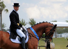 IHSPB Lars Peterson. LOXATCHEE, FL - Lars Peterson takes the blue ribbon in the Grand Prix Freestyle main event at IHS Champions Cup on March 23, 2013 in stock photos