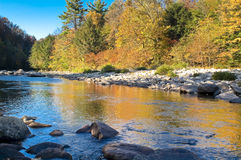 Loyal sock creek in the fall. The loyal sock creek in the endless mountains of pa royalty free stock image
