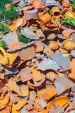 Loza de barro inútil de la basura Fotografía de archivo libre de regalías