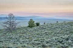 Löpeldrök över berg Arkivfoton