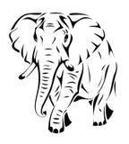 Éléphant d'isolement Image libre de droits