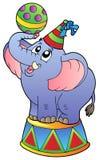 Éléphant de cirque de dessin animé Photo stock