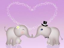 Éléphants drôles dans l'amour Photographie stock