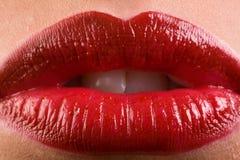 Lápiz labial rojo clásico Imágenes de archivo libres de regalías