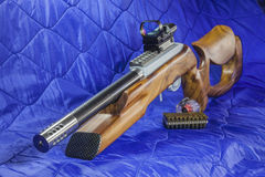 .22 LR  carbine Bolt  rifle Stock Image