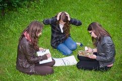 Lära för Schoolgirls som är intensivt Fotografering för Bildbyråer