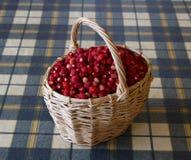 Lösa jordgubbar i en korg Arkivfoton