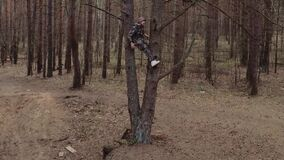 Hunter forest ranger dressed in camouflage suit sits on tree. Lsd narcotic effect, psychological disorder concept