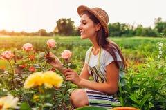 ?ltere Frau, die Blumen im Garten erfasst Frauenriechen von mittlerem Alter und bewundern Rosen Im Garten arbeitenkonzept stockbilder