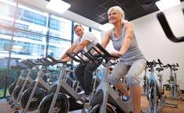 Ältere Paare in der Gymnastik Lizenzfreie Stockfotografie