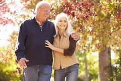 Ältere Paare, die durch Autumn Woodland gehen Lizenzfreies Stockfoto
