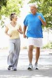 Ältere Paare, die im Park rütteln Stockfoto