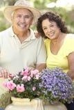 Ältere Paare, die zusammen im Garten arbeiten Stockfotos