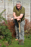 Älterer Gärtner, der auf seinem Spaten stillsteht. Stockfoto