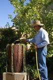 Älterer Mann-Bewässerung Stockbild