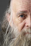 Älterer Mann mit langem Bart Stockfoto