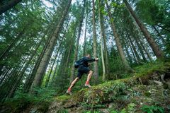 LTraveler με τους περιπάτους πόλων οδοιπορίας στο δάσος βουνών Στοκ Φωτογραφίες