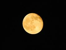 A lua Foto de Stock