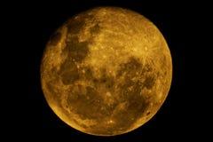 Lua amarela Fotografia de Stock Royalty Free