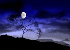A lua brilhante cheia. Fotografia de Stock Royalty Free