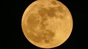 Lua cheia em 2015 vídeos de arquivo