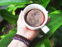 A Lua cheia em um chá do cuppa imagem de stock