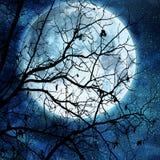 Lua cheia no azul Imagem de Stock Royalty Free
