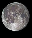 Lua cheia no detalhe elevado Foto de Stock