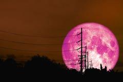 a lua cor-de-rosa super flutua no céu noturno acima da sombra eleger fotos de stock royalty free