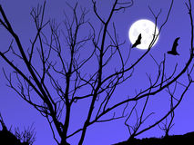 Lua crepuscular Imagem de Stock