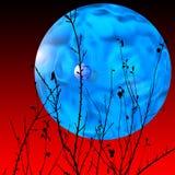 Lua da água ilustração do vetor