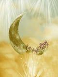 Lua da fantasia ilustração stock