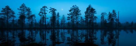 Lua da meia-noite Foto de Stock Royalty Free