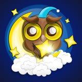 Lua e coruja Foto de Stock Royalty Free