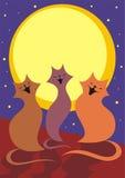 A lua e os gatos Fotografia de Stock