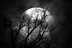 A lua na noite assustador Foto de Stock