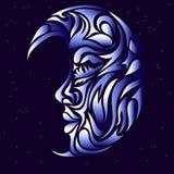 Lua no céu noturno Foto de Stock Royalty Free