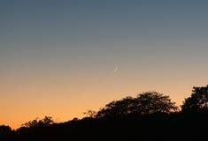 Lua nova no céu Imagens de Stock Royalty Free