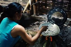 Keo the wife of a fisherman cooking some small fry fish for lunch royalty free stock image