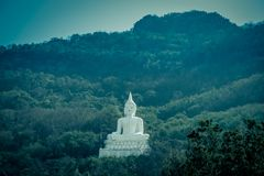 Luang Pora Khao lub biały duży Buddha na Si Siat górze, Wat Theppitak Punnaram, Phaya jen, Pakchong okręg, Nakhon Ratchasima, nor Obraz Stock