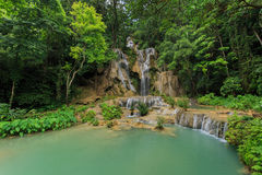 Luang Prabang Kansai falls in frest Royalty Free Stock Photography