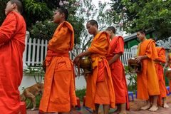 Buddhist monks collect alms in Luang Prabang, Laos. LUANG PRABANG, LAOS - 9/23/2017: Buddhist monks collect alms in Luang Prabang, Laos royalty free stock image