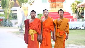 LUANG PRABANG, LAOS - DECEMBER 9, 2016 : A group of young Buddhist monks return from the city to their Buddhist school. At the temple.Footage of Buddhist monks stock video footage