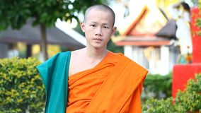 LUANG PRABANG, LAOS - DECEMBER 9, 2016:Video portrait of a young Buddhist monk. Monks are educated in Buddhist schools stock video