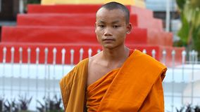 LUANG PRABANG, LAOS - DECEMBER 9, 2016:Video portrait of a young Buddhist monk. Monks are educated in Buddhist schools. At the city`s temples studying foreign stock footage