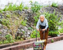 LUANG PRABANG, LAOS - JANUARI 11, 2017: En äldre kvinna med en vagn på en stadsgata Kopiera utrymme för text Royaltyfri Bild