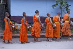 Luang Prabang, Laos, jeunes moines dans l'aumône donnant la cérémonie, 16 photo stock