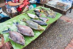 Luang Prabang Laos, Jun, - 13 2015: Luang Prabang ranku rynek Fotografia Royalty Free
