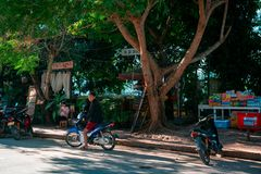 Luang Prabang, Laos, 12.17.18: Life in the streets of Luang Prabang. Man stands in front of a restaurant near the Mekong river. stock photos