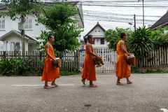 Novice Buddhist monks collect alms in Luang Prabang, Laos. LUANG PRABANG, LAOS - 9/24/2017: Novice Buddhist monks collect alms in Luang Prabang, Laos stock photo